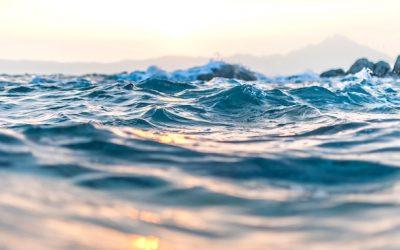 The Rising Waters of Menschlichkeit