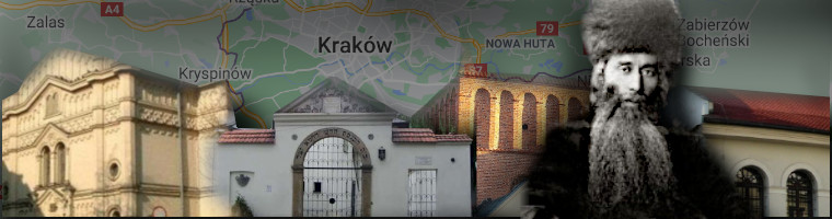 <span>Insights from Krakow</span>